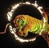 Цирки в Климово